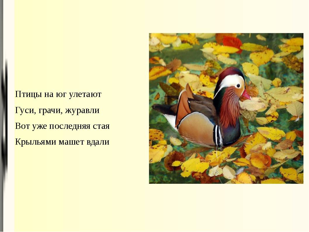Птицы на юг улетают Гуси, грачи, журавли Вот уже последняя стая Крыльями маше...