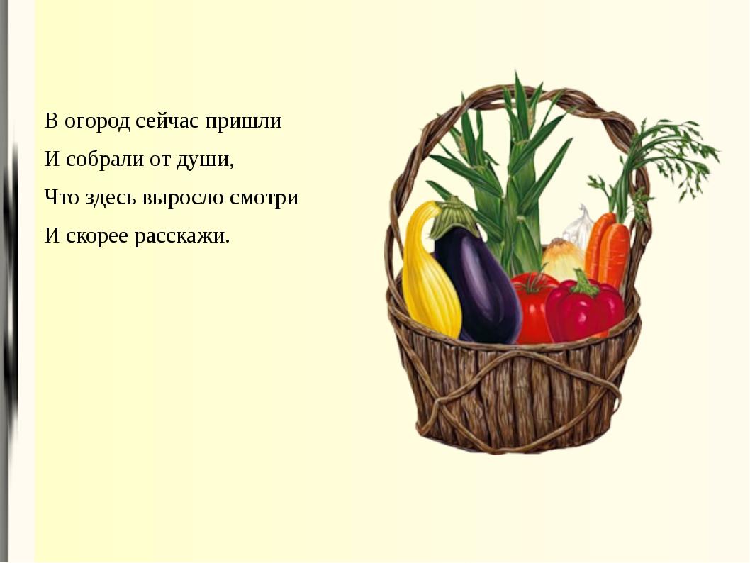 В огород сейчас пришли И собрали от души, Что здесь выросло смотри И скорее р...