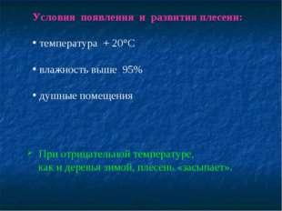 Условия появления и развития плесени: температура + 20°С влажность выше 95% д