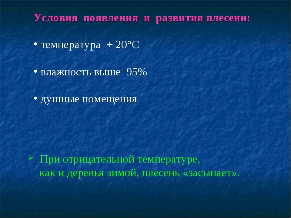 Условия появления и развития плесени: температура + 20°С влажность выше 95% д...