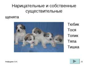 Нефедова О.Н. * Нарицательные и собственные существительные щенята Тюбик Тося