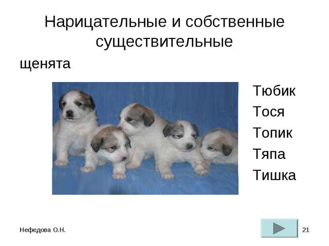 Нефедова О.Н. * Нарицательные и собственные существительные щенята Тюбик Тося...