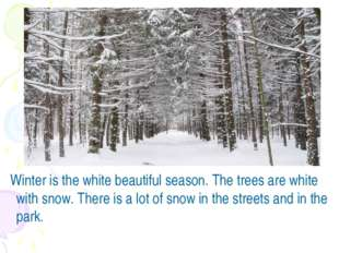 Winter is the white beautiful season. The trees are white with snow. There i