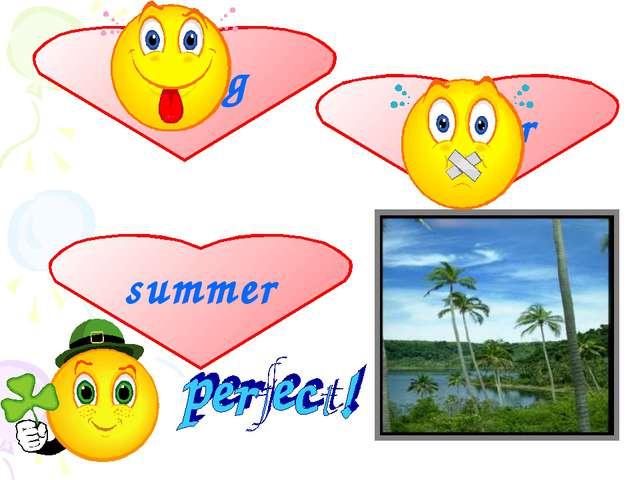 spring summer winter