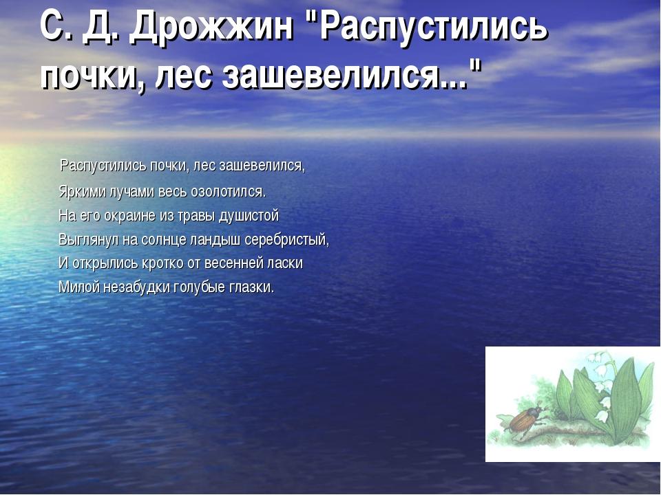 "С. Д. Дрожжин ""Распустились почки, лес зашевелился..."" Распустились почки, ле..."