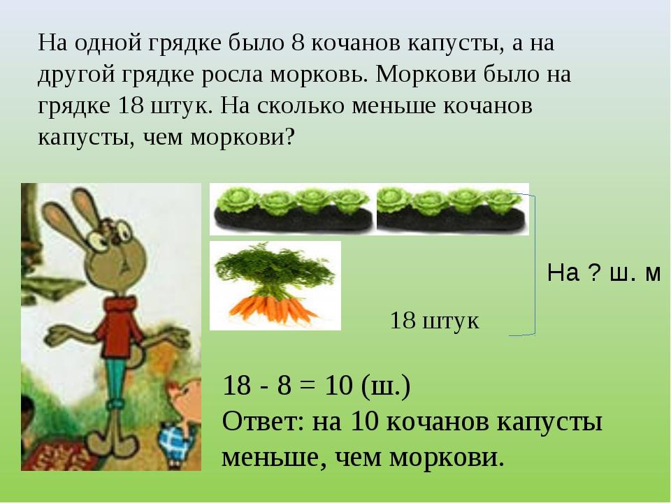 На одной грядке было 8 кочанов капусты, а на другой грядке росла морковь. Мор...