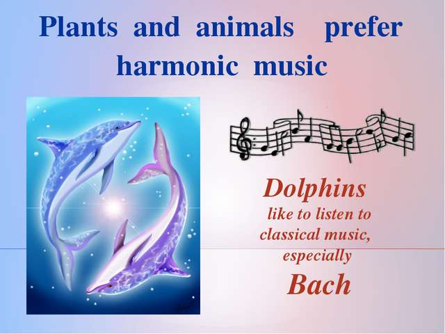 Plants and animals prefer harmonic music Dolphins like to listen to classica...