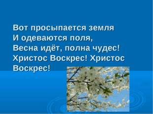 Вот просыпается земля И одеваются поля, Весна идёт, полна чудес! Христос Воск