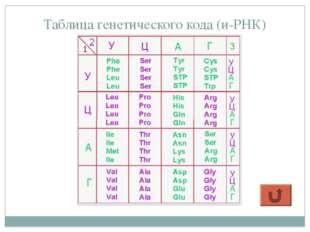 Таблица генетического кода (и-РНК)