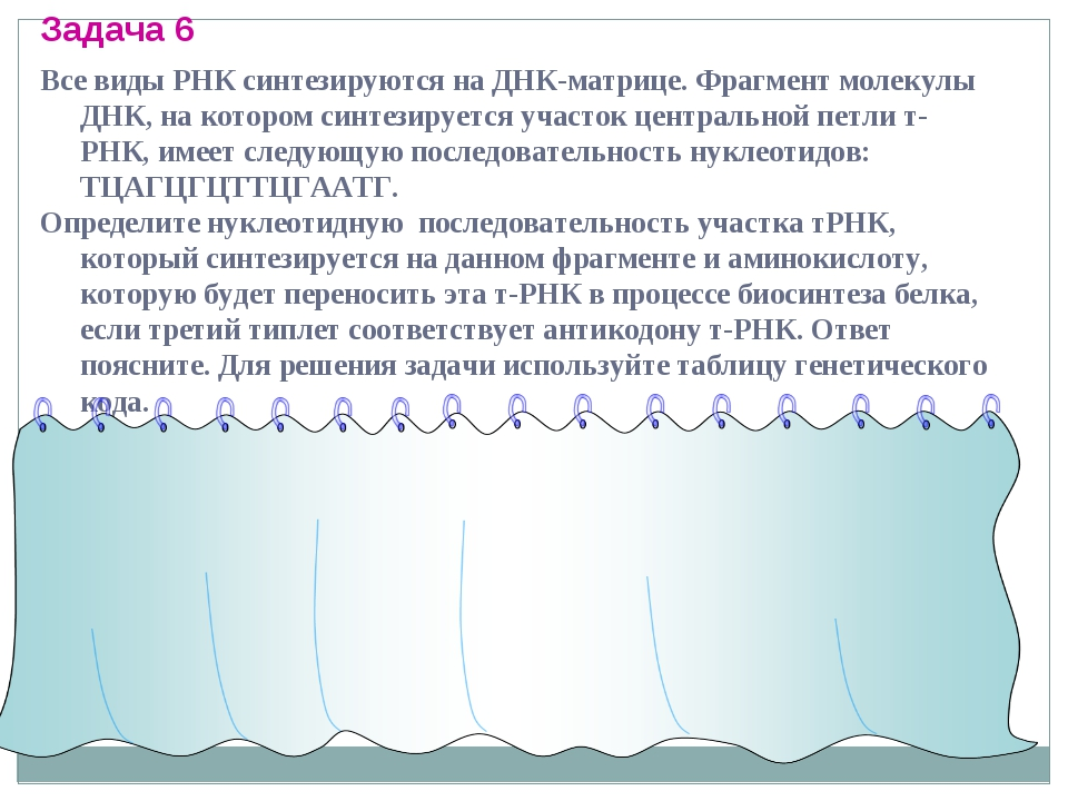 Задача 6 Все виды РНК синтезируются на ДНК-матрице. Фрагмент молекулы ДНК, на...