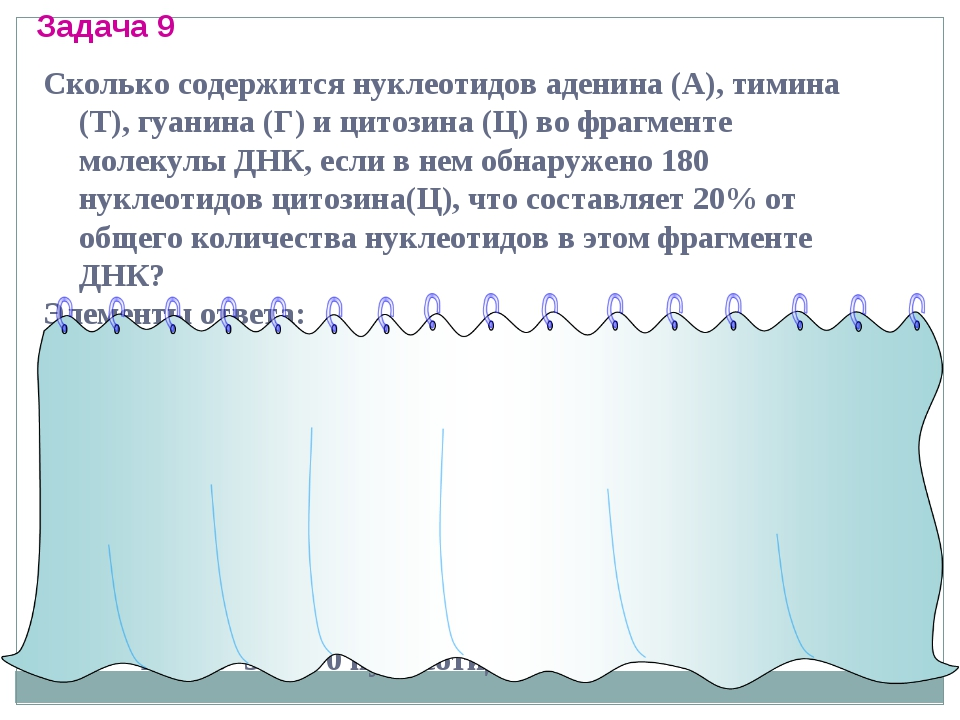 Сколько содержится нуклеотидов аденина (А), тимина (Т), гуанина (Г) и цитозин...