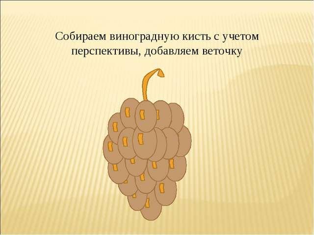 Собираем виноградную кисть с учетом перспективы, добавляем веточку