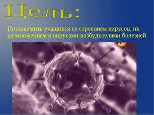 Познакомить учащихся со строением вирусов, их размножением и вирусами-возбуди
