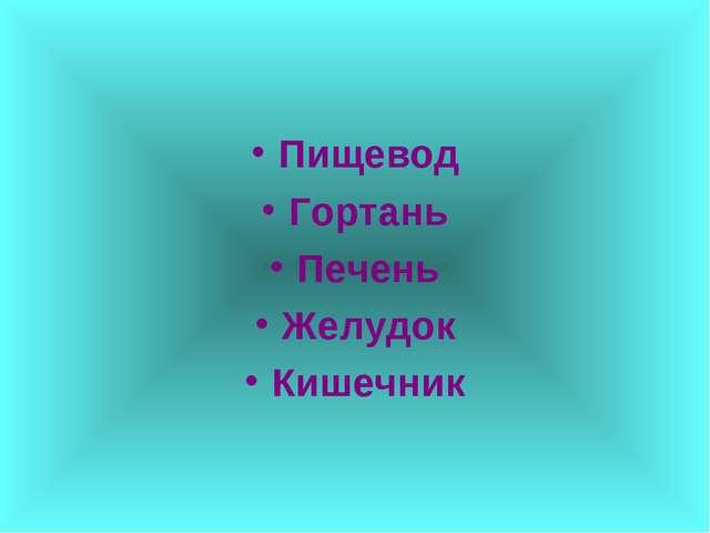 Пищевод Гортань Печень Желудок Кишечник