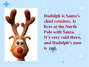 Rudolph is Santa's chief reindeer. It lives at the North Pole with Santa. It'