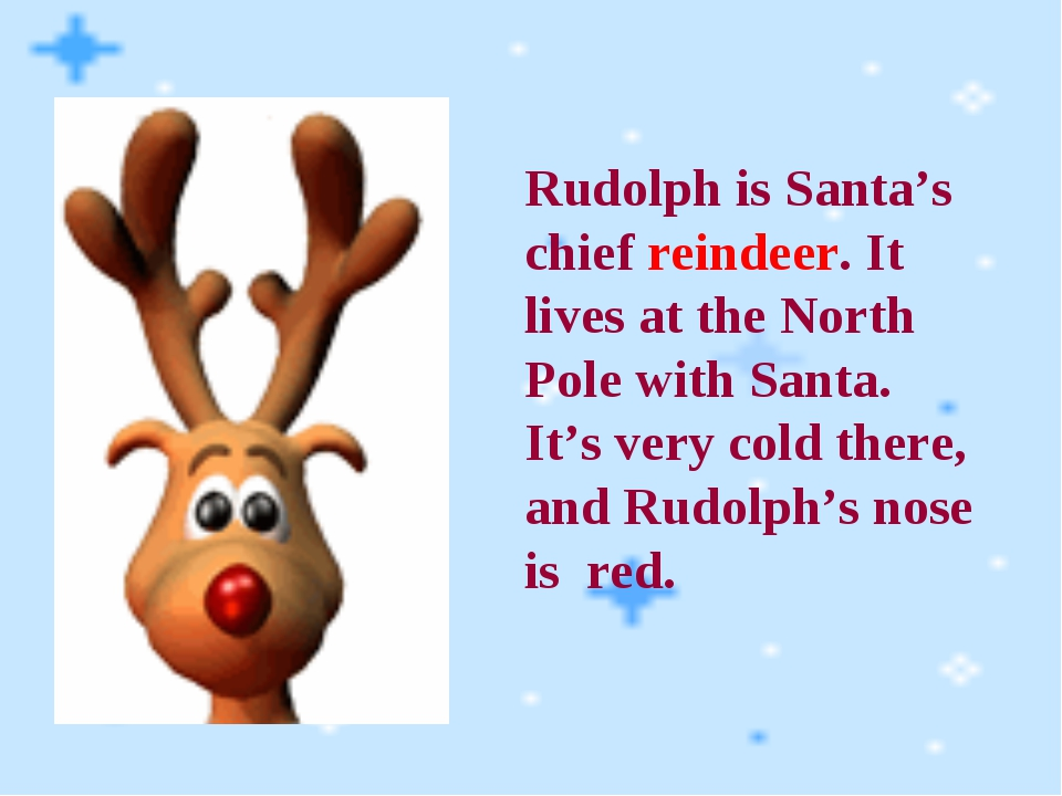 Rudolph is Santa's chief reindeer. It lives at the North Pole with Santa. It'...