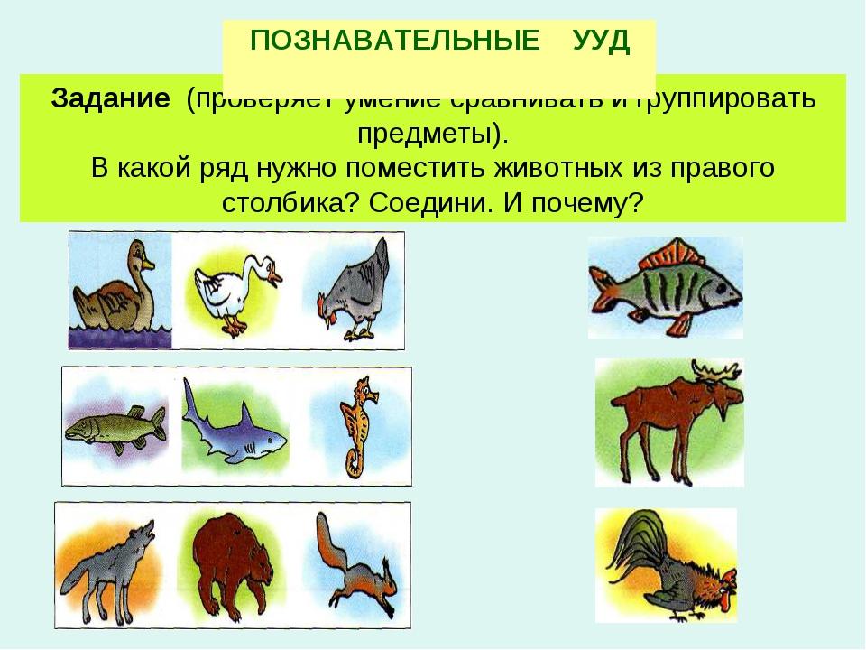 Задание (проверяет умение сравнивать и группировать предметы). В какой ряд ну...