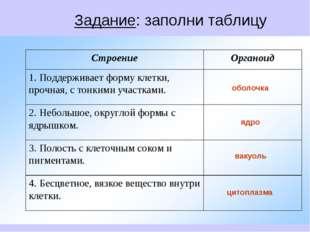 Задание: заполни таблицу
