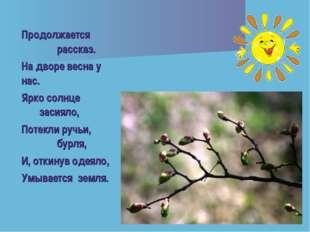 Продолжается рассказ. На дворе весна у нас. Ярко солнце засияло, Потекли ручь