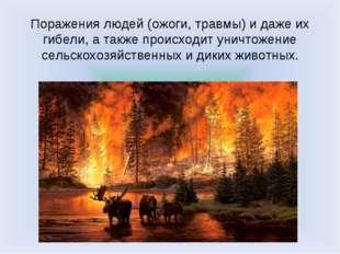 Поражения людей (ожоги, травмы) и даже их гибели, а также происходит уничтоже