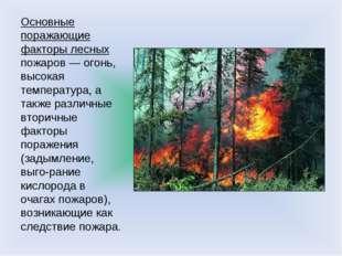 Основные поражающие факторы лесных пожаров — огонь, высокая температура, а та