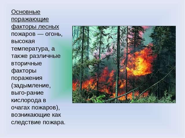 Основные поражающие факторы лесных пожаров — огонь, высокая температура, а та...