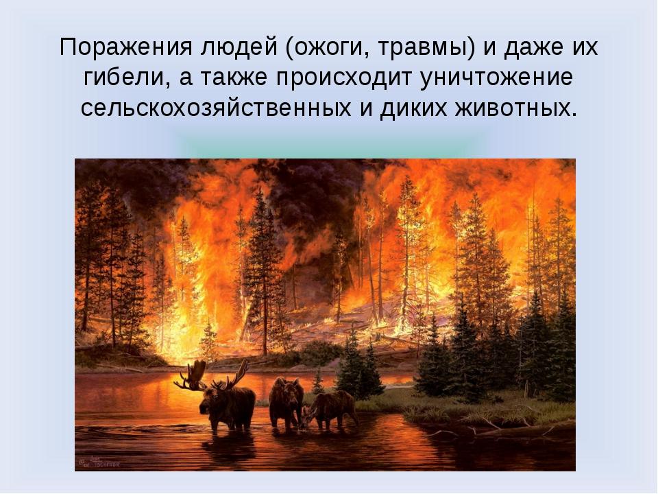 Поражения людей (ожоги, травмы) и даже их гибели, а также происходит уничтоже...