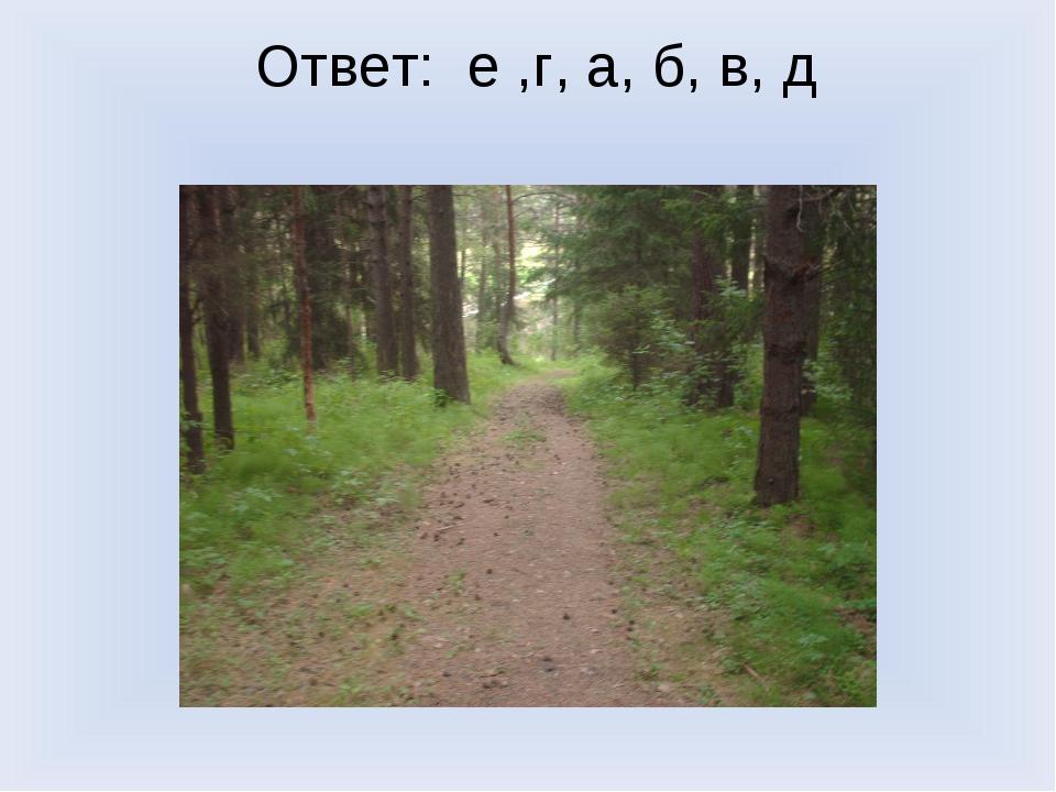 Ответ: е ,г, а, б, в, д