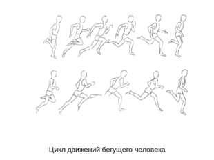 Цикл движений бегущего человека