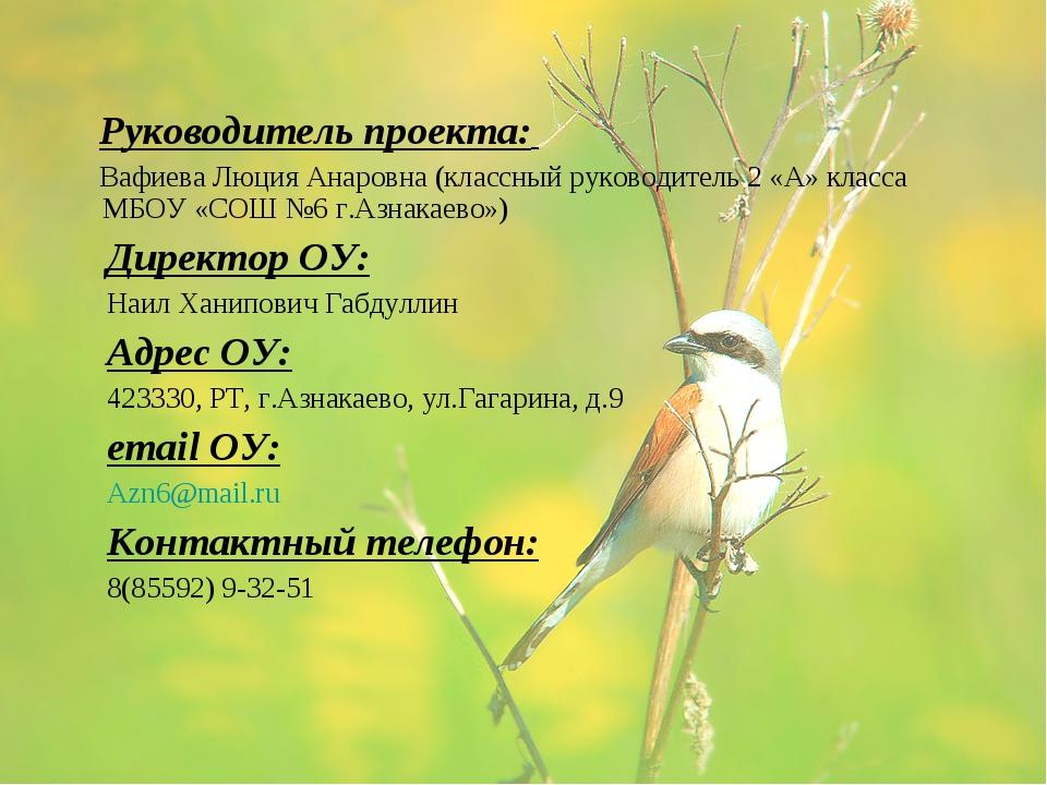 Руководитель проекта: Вафиева Люция Анаровна (классный руководитель 2 «А» кл...