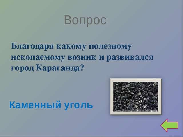 Вопрос Благодаря какому полезному ископаемому возник и развивался город Караг...