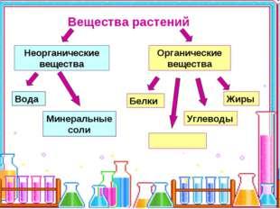 Вещества растений Неорганические вещества Органические вещества Вода Минераль