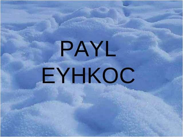 PAYL EYHKOC