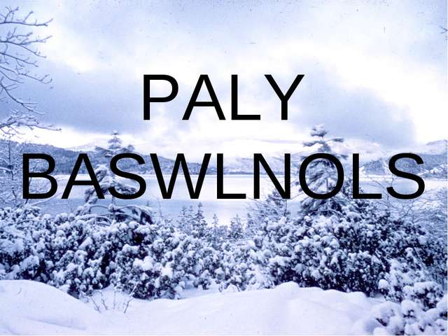 PALY BASWLNOLS