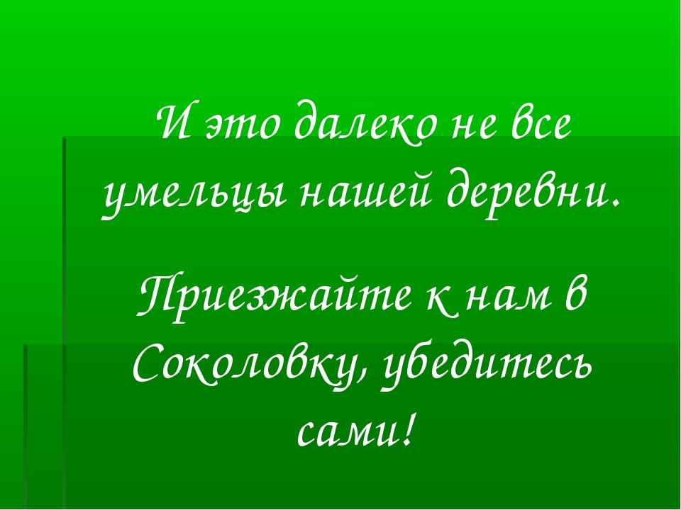 И это далеко не все умельцы нашей деревни. Приезжайте к нам в Соколовку, убед...