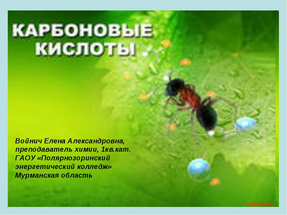 Войнич Елена Александровна, преподаватель химии, 1кв.кат. ГАОУ «Полярнозоринс...