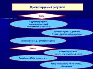 Прогнозируемый результат Знать структуру программы деятельности детской общес