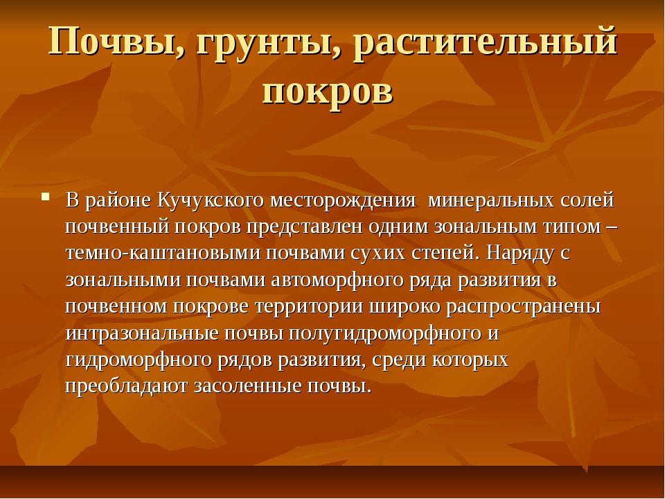 Почвы, грунты, растительный покров В районе Кучукского месторождения минераль...