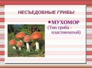 НЕСЪЕДОБНЫЕ ГРИБЫ МУХОМОР (Тип гриба - пластинчатый)