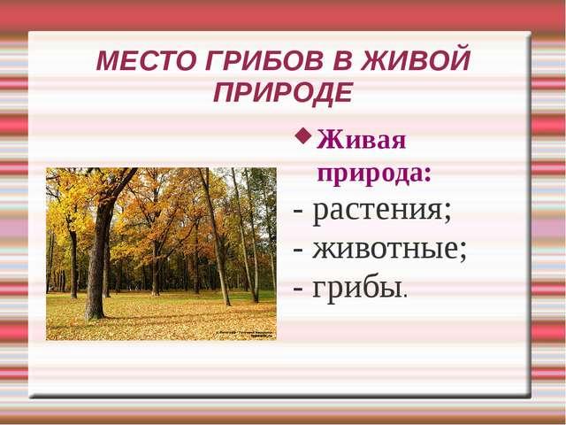 МЕСТО ГРИБОВ В ЖИВОЙ ПРИРОДЕ Живая природа: - растения; - животные; - грибы.