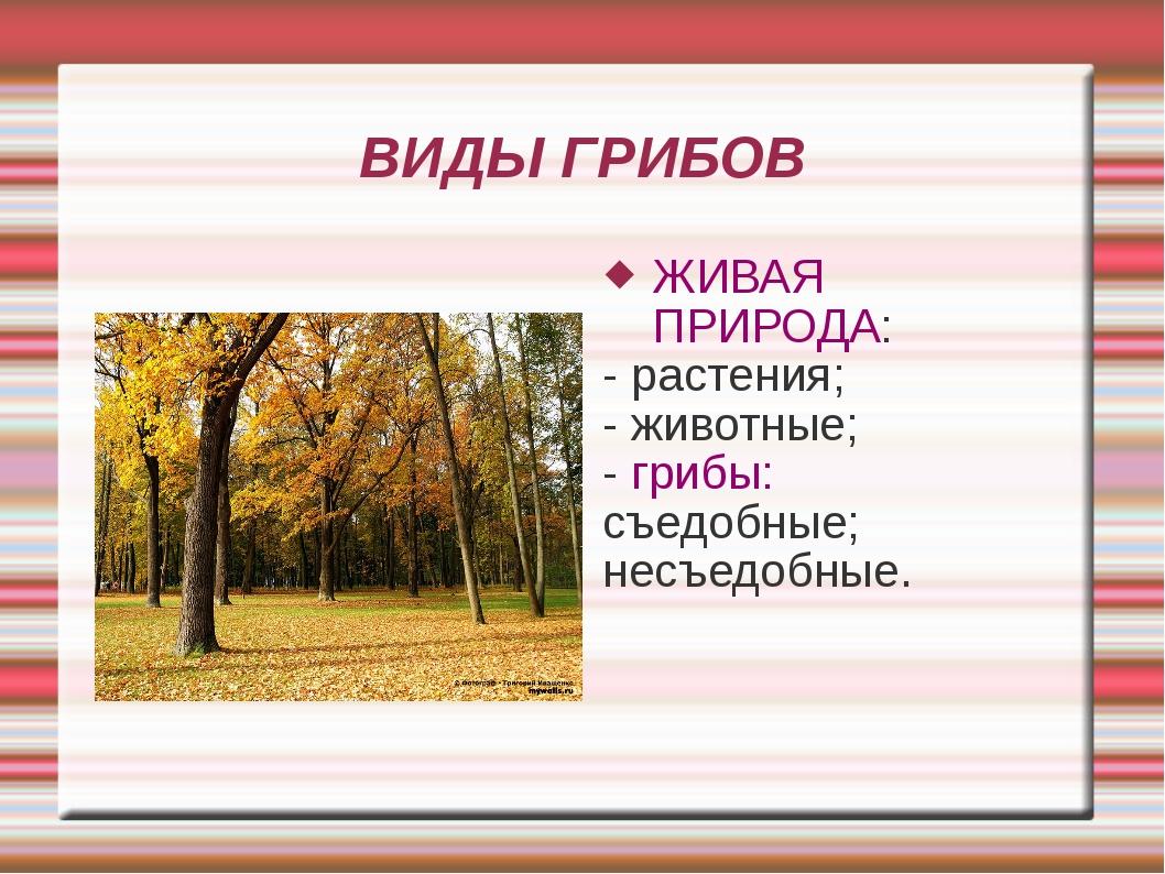 ВИДЫ ГРИБОВ ЖИВАЯ ПРИРОДА: - растения; - животные; - грибы: съедобные; несъед...