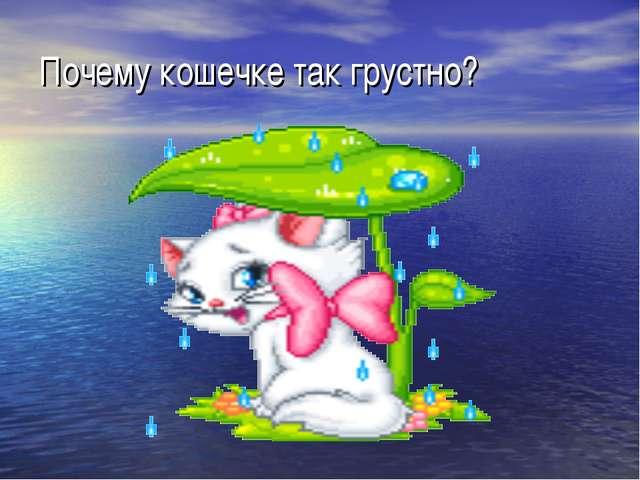 Почему кошечке так грустно?