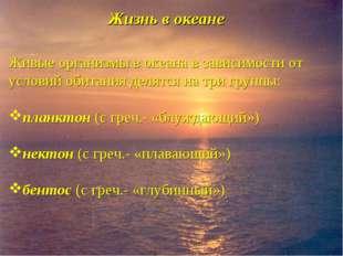 Жизнь в океане Живые организмы в океана в зависимости от условий обитания дел