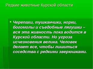 Редкие животные Курской области Черепахи, тушканчики, норки, богомолы и съедо