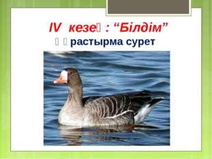 """IV кезең: """"Білдім"""" Құрастырма сурет"""