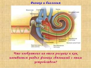 Физика и биология Что изображено на этом рисунке и как называется раздел физи