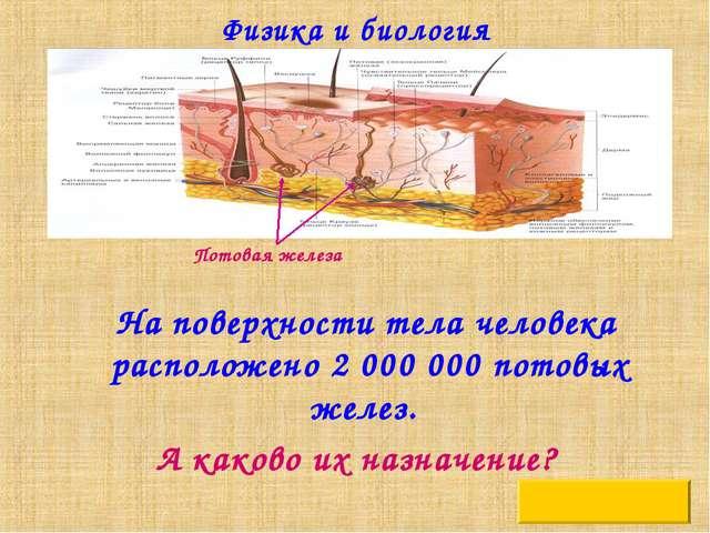 Физика и биология На поверхности тела человека расположено 2 000 000 потовых...