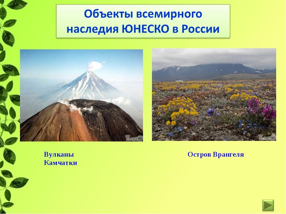 Вулканы Камчатки Остров Врангеля