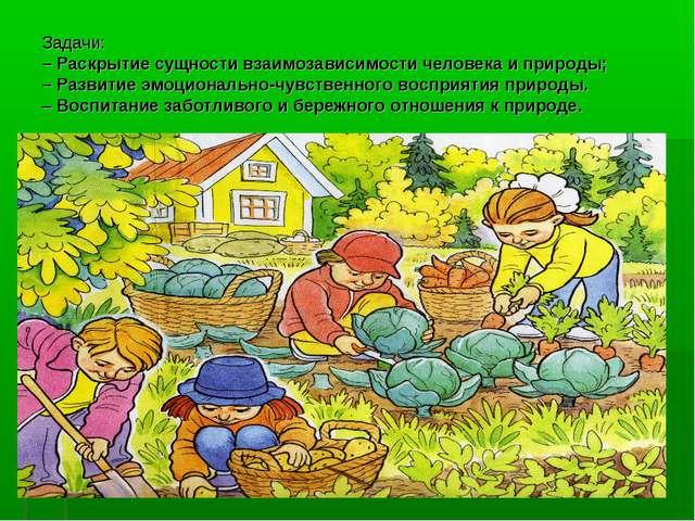 Задачи: – Раскрытие сущности взаимозависимости человека и природы; – Развитие...