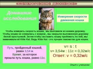 Домашние исследования Измерение скорости движения кошки Чтобы измерить скорос